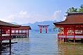 Нажмите на изображение для увеличения Название: itsukushima.jpg Просмотров: 134 Размер:191.9 Кб ID:2694548